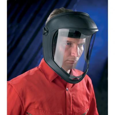 Pulsafe Face Protection
