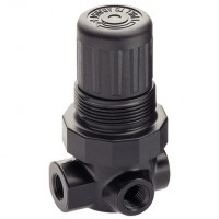 R07-200-RNKG Ported Pressure Regulators