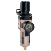 FM-30-02-W Filter Regulator