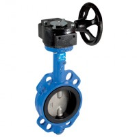 GEAR/150SSEP Cast Iron Body, Stainless Steel Disc, EPDM Liner
