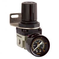 FM-50-10-R Regulator