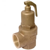 542-20-1.5 Safety Relief Valve (Fig 542)