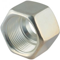 M22L-1.4571AGP Silver Plated Stainless Steel Nuts (AGP)